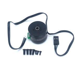 BGM2208-80 gimbal motor